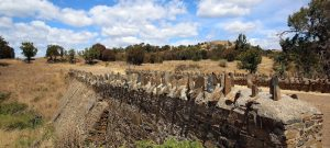Spiky Bridge, built by Convicts in 1843 near Swansea, Tasmania.